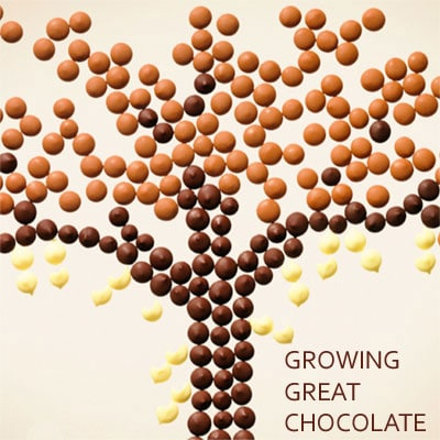 Growing Great Chocolate van Callebaut bij Saranne