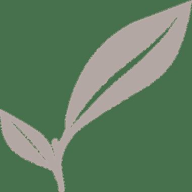 Saranne - sponsoring